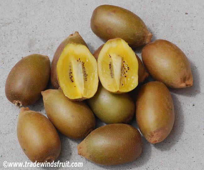 how to grow kiwi fruit plants