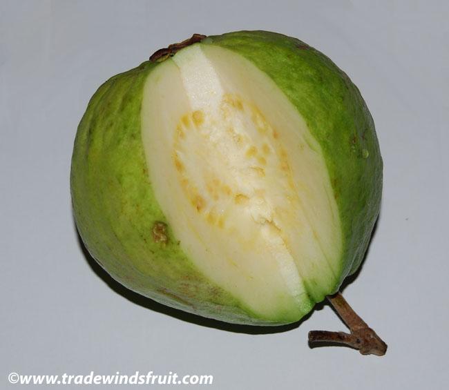 Guava Psidium Guajava Seeds